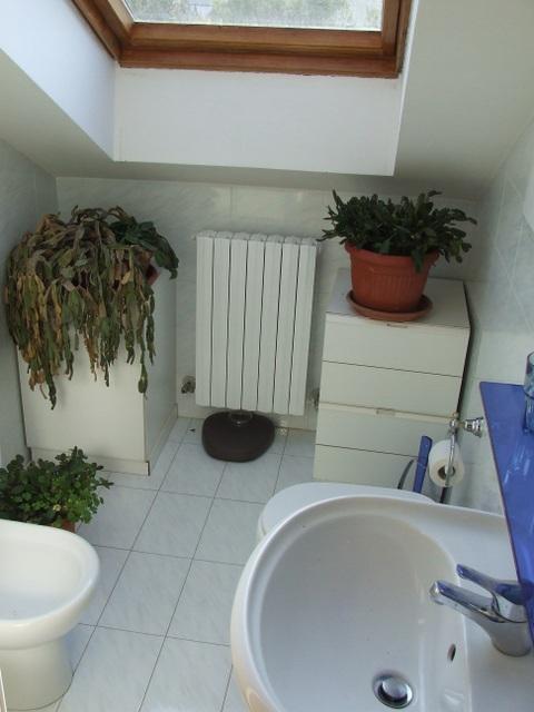 http://www.senigalliaappartamenti.it/contenuti/20/mansarda---bagno.jpg